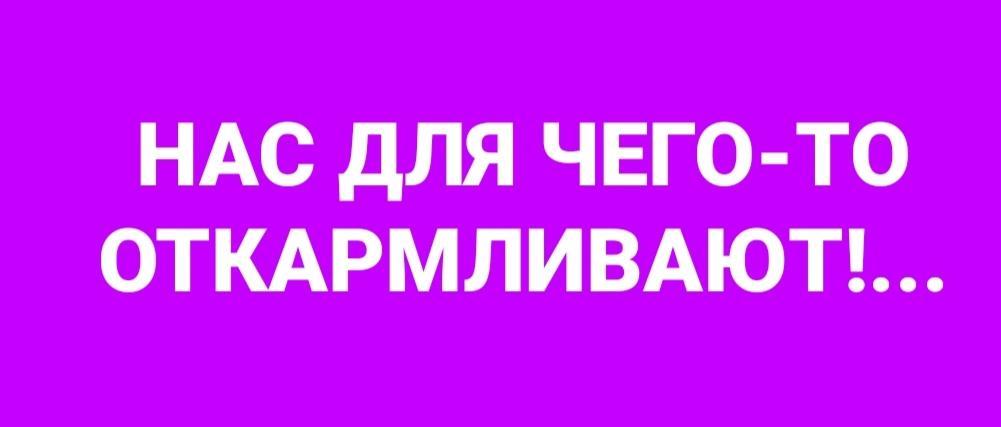 Screenshot_20200324_171007.jpg